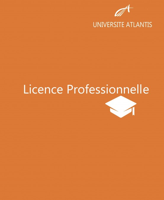 Professional License
