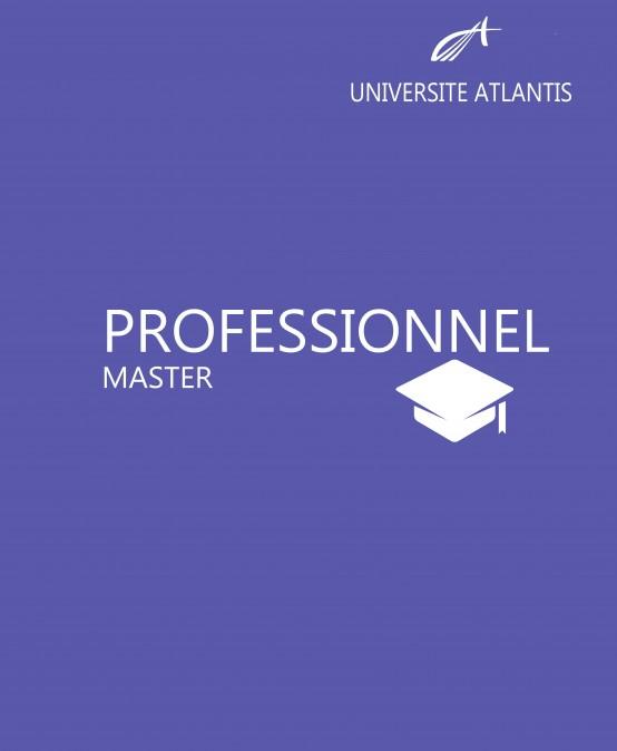 Master Professionnel