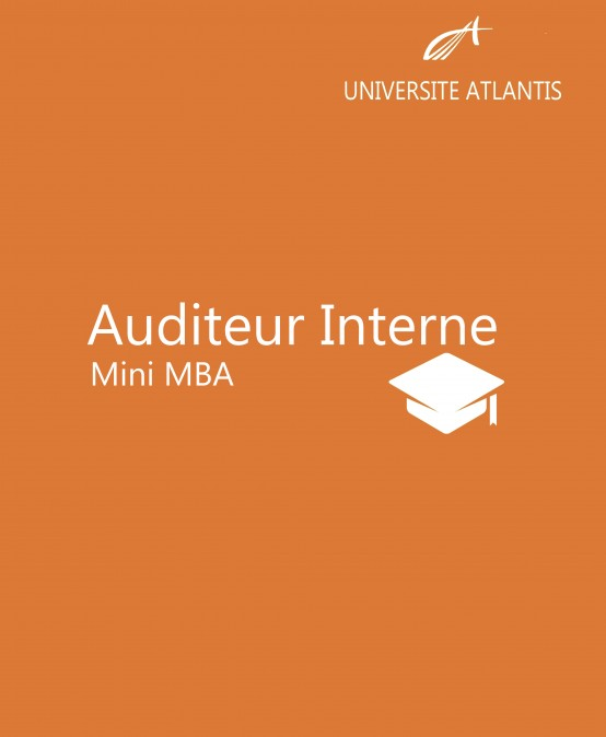 Auditeur Interne