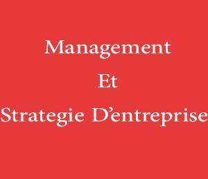 MANAGEMENT ET STRATEGIE D'ENTREPRISE
